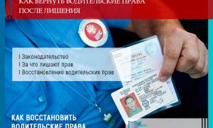 Как вернуть водительские права после лишения в 2019 году