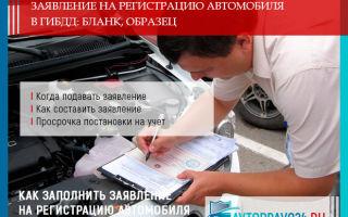 Заявление на регистрацию автомобиля в ГИБДД в 2019 году: образец заполнения